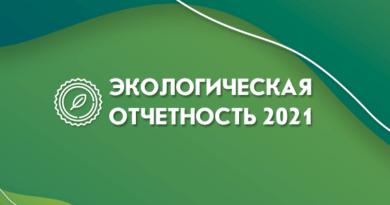 экологическая отчетность 2021